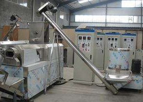 French fry equipment in India